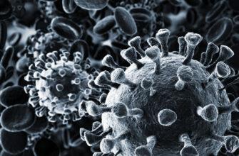 Как отличить грипп от коронавируса. 3 простых способа